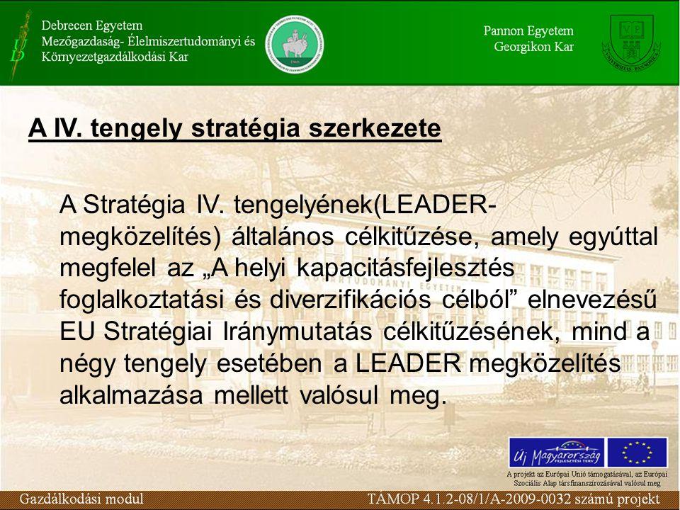 A IV. tengely stratégia szerkezete A Stratégia IV.