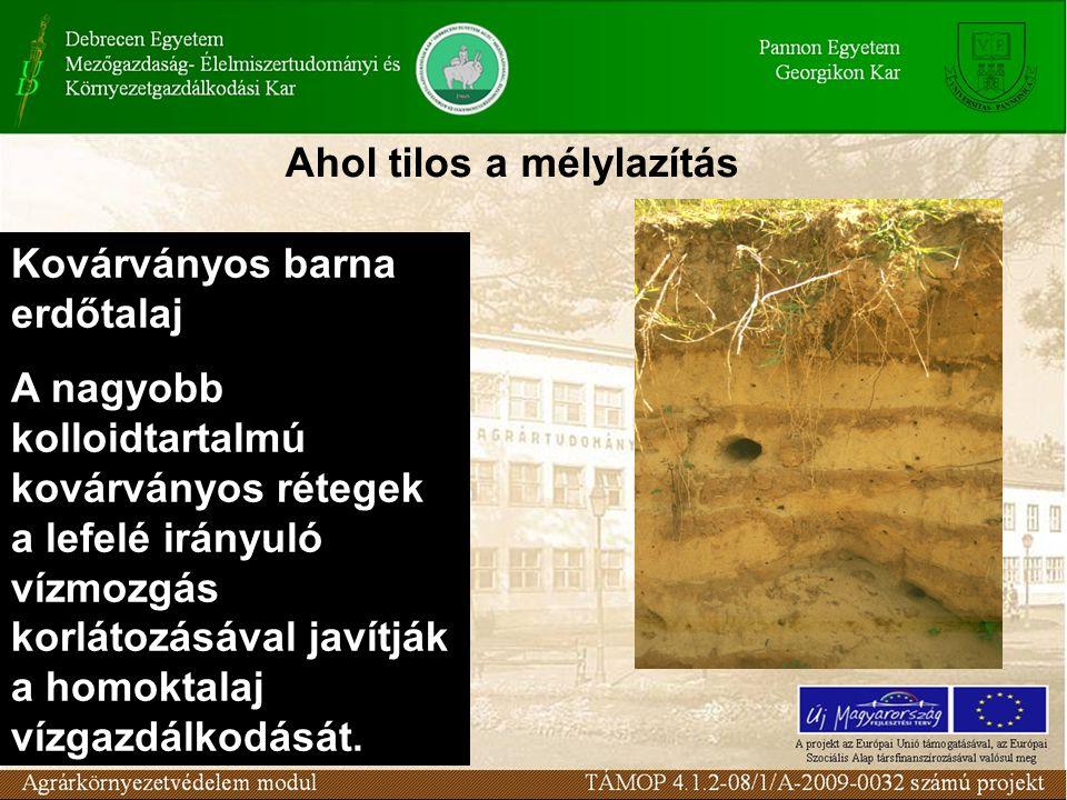 Kovárványos barna erdőtalaj A nagyobb kolloidtartalmú kovárványos rétegek a lefelé irányuló vízmozgás korlátozásával javítják a homoktalaj vízgazdálkodását.