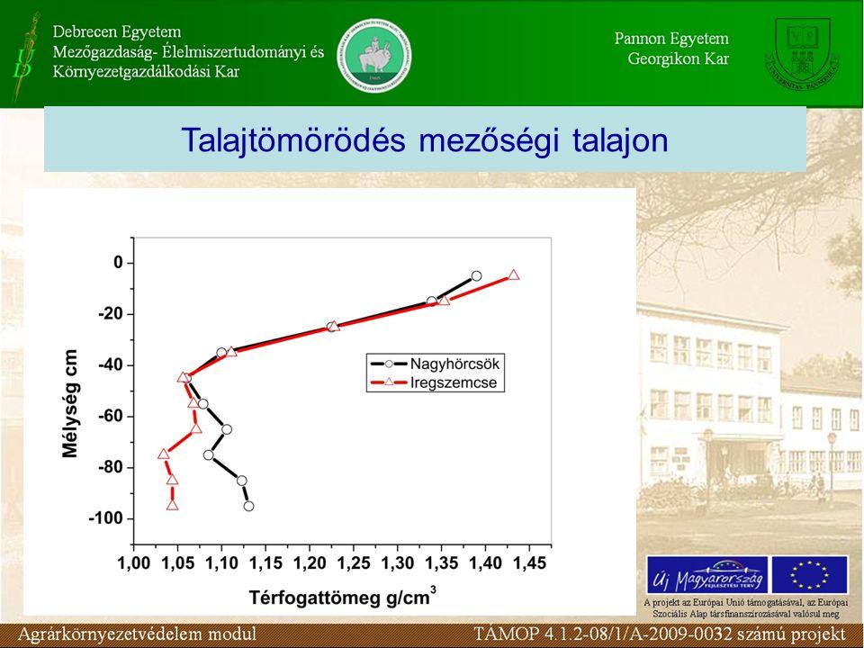 A tömörödés legfontosabb talajhasználattal összefüggő oka a nedves talaj taposása