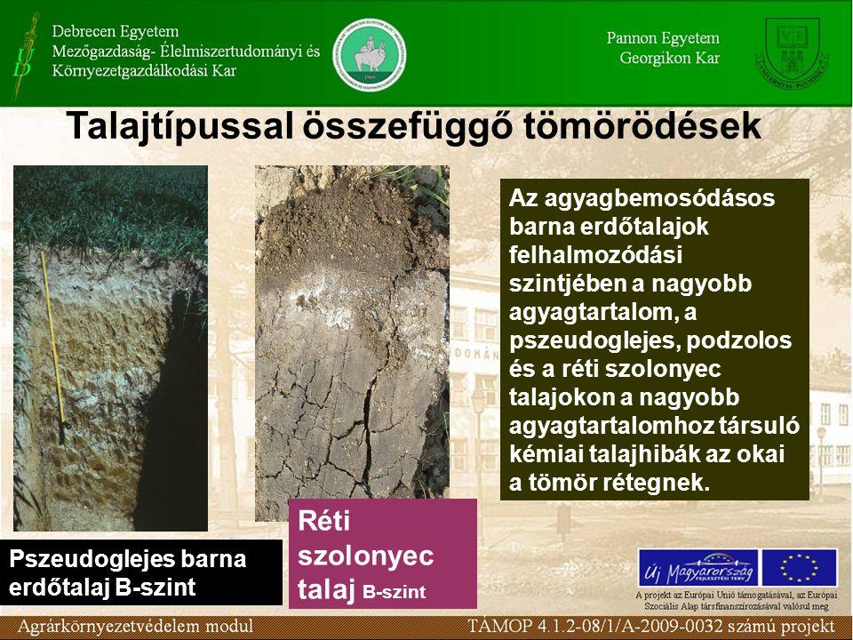Pszeudoglejes barna erdőtalaj B-szint Réti szolonyec talaj B-szint Az agyagbemosódásos barna erdőtalajok felhalmozódási szintjében a nagyobb agyagtartalom, a pszeudoglejes, podzolos és a réti szolonyec talajokon a nagyobb agyagtartalomhoz társuló kémiai talajhibák az okai a tömör rétegnek.