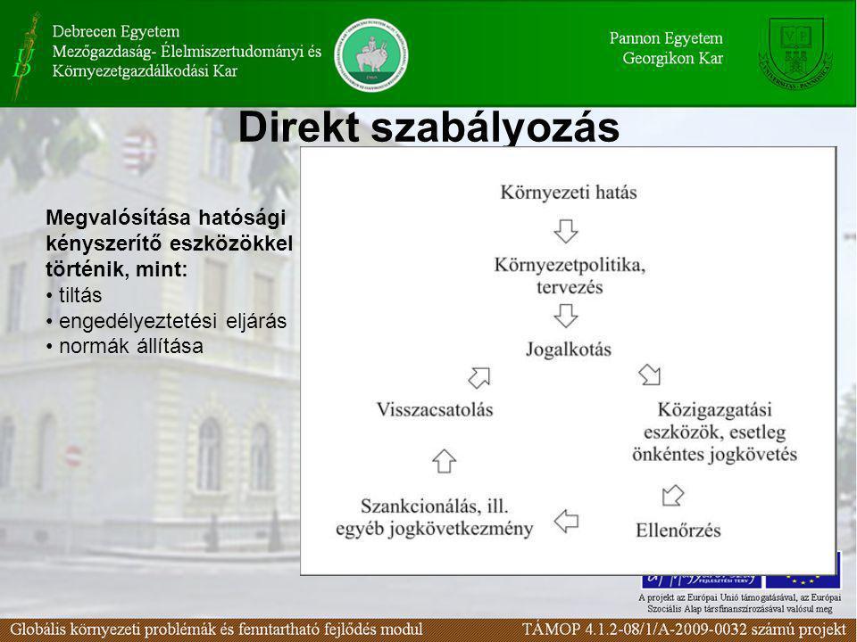 Közgazdasági (piaci) eszközök Megvalósítása a piaci szereplők közgazdasági eszközökkel való ösztönzésével történik