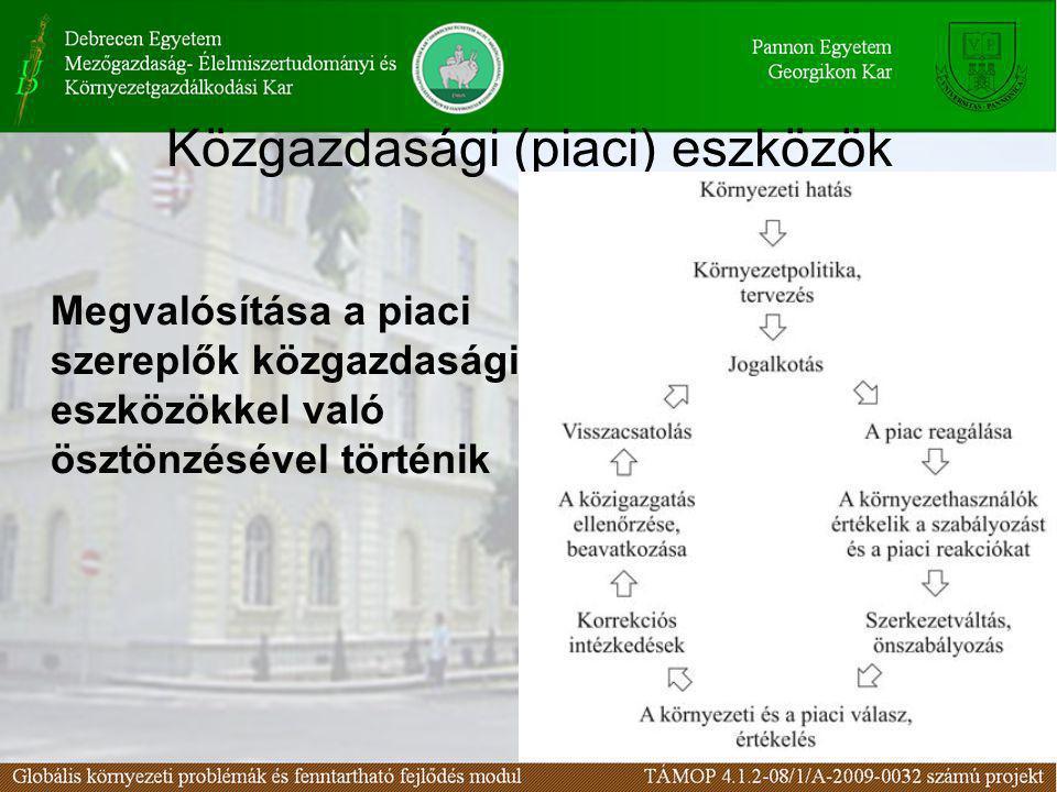 Közgazdasági ösztönzés környezetvédelmi díjak: kibocsátási vagy környezetterhelési díjak, termékdíjak, betétdíjak, szolgáltatási, felhasználási díjak piaci engedélyek (szennyezési jogok): buborékpolitika, emisszió kiegyenlítési rendszer, emissziós bankügyletek, együttes szennyezés kibocsátás, módosult alkalmazások végrehajtási ösztönzők: adómentesség támogatások: kedvezményes kölcsönök, juttatások környezeti felelősségbiztosítás: kötelező, önkéntes