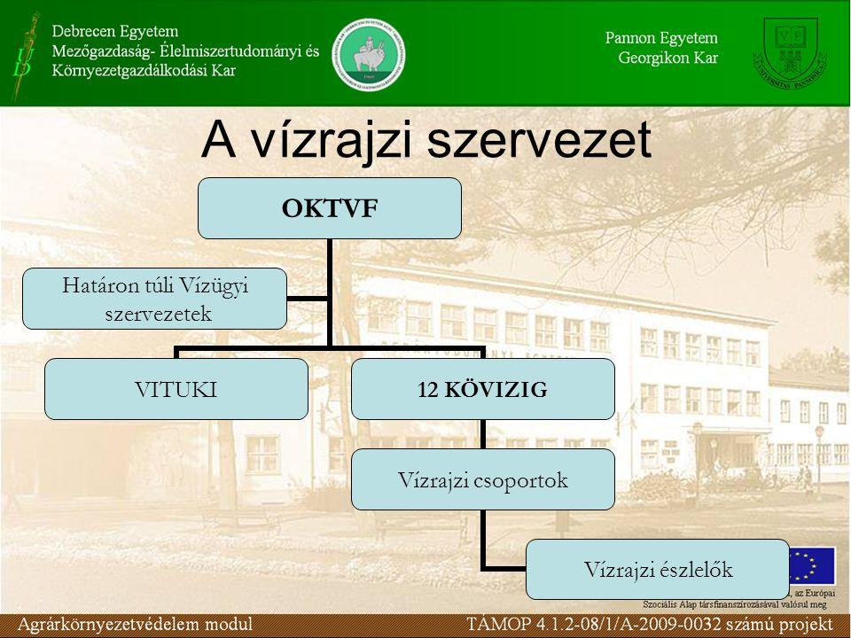 A vízrajzi szervezet OKTVF VITUKI12 KÖVIZIG Vízrajzi csoportok Vízrajzi észlelők Határon túli Vízügyi szervezetek