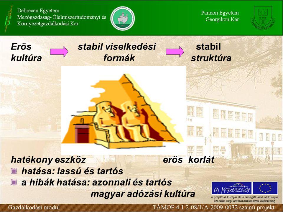 Erős stabil viselkedési stabil kultúra formák struktúra hatékony eszköz erős korlát hatása: lassú és tartós a hibák hatása: azonnali és tartós magyar adózási kultúra