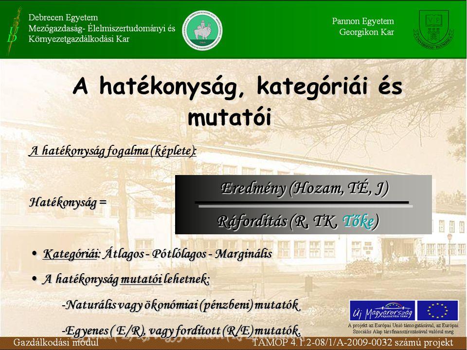 TÉ (Ft) TK (Ft) J (Ft) MH(%) Termelési függvények és a hatékonyság Termelési költség fgv.