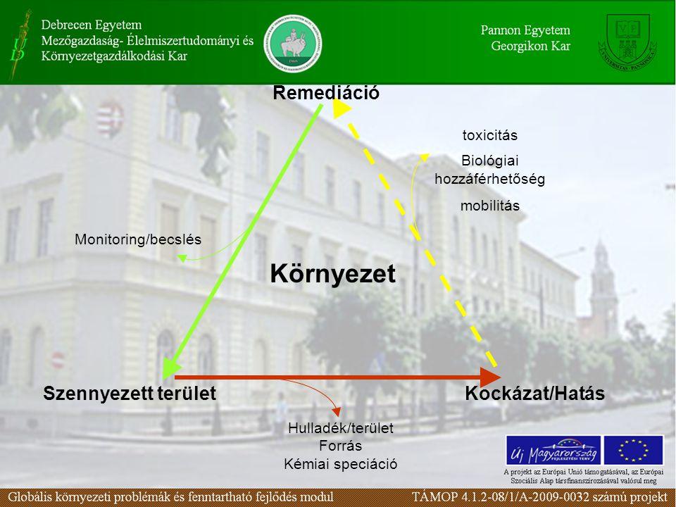 Remediáció Környezet Kockázat/HatásSzennyezett terület Hulladék/terület Forrás Kémiai speciáció Monitoring/becslés toxicitás Biológiai hozzáférhetőség mobilitás