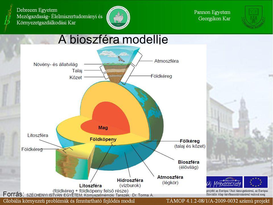 A környezeti elemek csoportosítása Élő környezeti elemek –Növényvilág Erdő Gyep Mocsári növények Mezőgazdasági és dísznövények –Állatvilág Vadon élő fajok Háziasított fajok –Mikroorganizmusok Élettelen környezeti elemek –Légkör –Víz –Talaj és kőzet –Épített környezet épületek, utak, iparterületek, mezőgazdasági területek, parkok, műtárgyak, parkoló terek, repterek, csatornák, egyéb infrastrukturális létesítmények, műemlékek, laktanyák, stb.