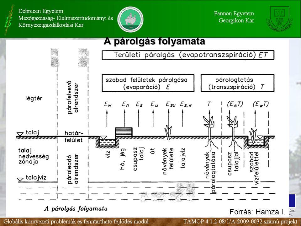 Párologás kifejezések Párolgás (E, evaporáció) kádpárolgás –párolgás szabad vízfelületről –párolgás kopár talajfelületről –párolgás tó és jég felületről –párolgás a növényzet felületéről (intercepció) –párolgás burkolt (utak, háztetők) felületéről –párolgás talajvízből Viszonyítási (referencia) párolgás (párolgás kopár talajú liziméterből) Potenciális evaporáció (PE, lehetséges párolgás) Evapotranszspiráció (ET) Potenciális evapotranszspiráció (PET) (lehetséges evapotranszspiráció) – evapotranszspiráció vízfelület + növény – evapotranszspiráció talaj + növény – viszonyítási evapotranszspiráció (növénnyel borított talaj)