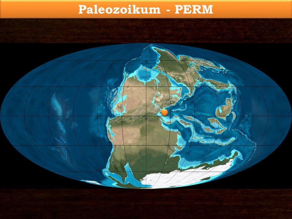 Paleozoikum - PERM
