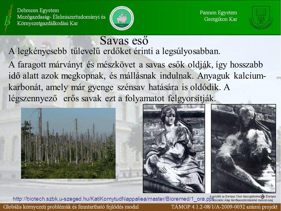 6 Savas eső A legkényesebb tűlevelű erdőket érinti a legsúlyosabban. A faragott márványt és mészkövet a savas esők oldják, így hosszabb idő alatt azok
