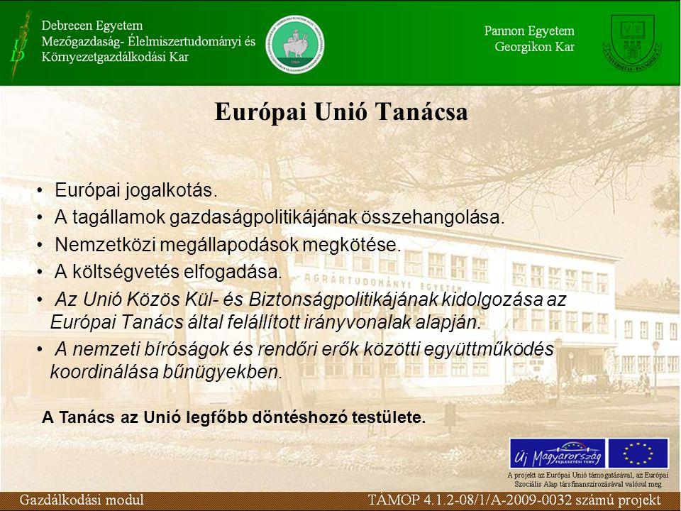 Európai Unió Tanácsa Európai jogalkotás. A tagállamok gazdaságpolitikájának összehangolása.