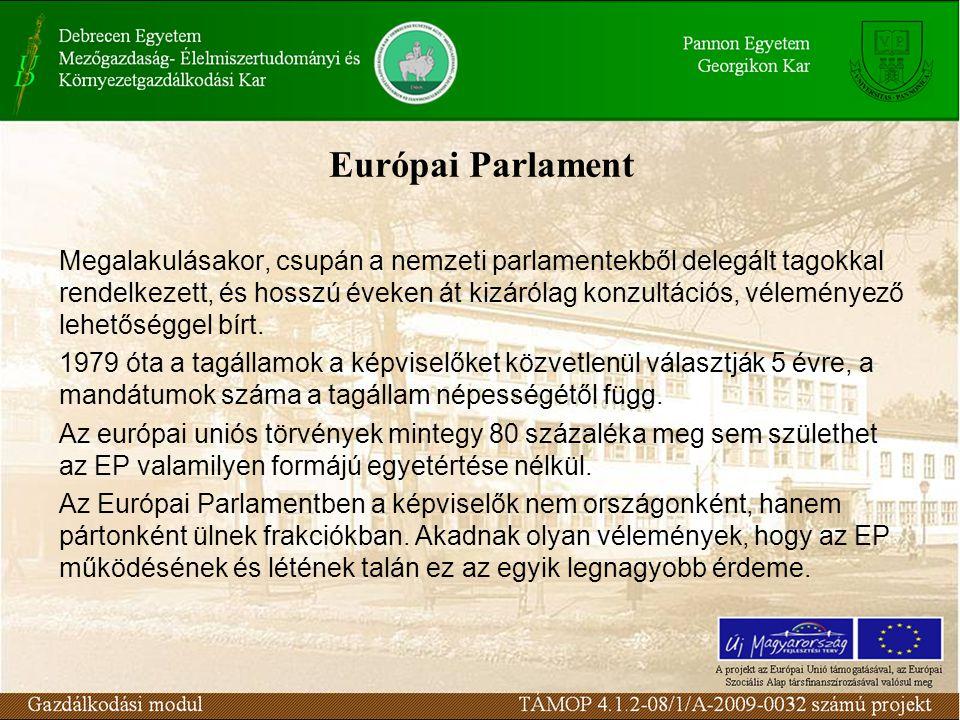 Európai Parlament Megalakulásakor, csupán a nemzeti parlamentekből delegált tagokkal rendelkezett, és hosszú éveken át kizárólag konzultációs, véleményező lehetőséggel bírt.