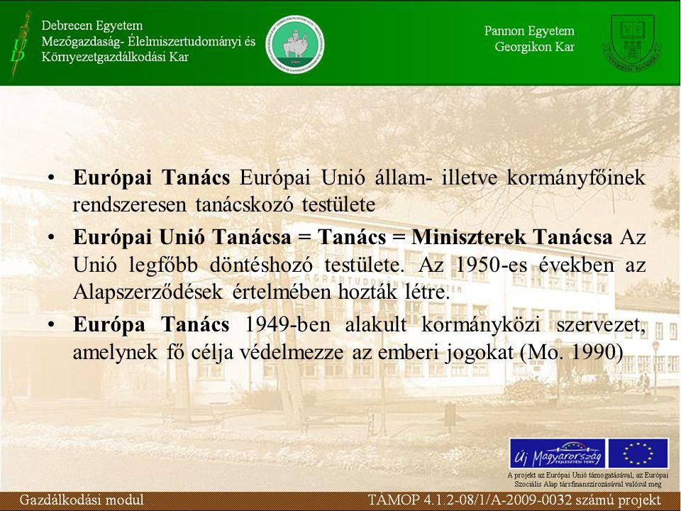 Európai Tanács Európai Unió állam- illetve kormányfőinek rendszeresen tanácskozó testülete Európai Unió Tanácsa = Tanács = Miniszterek Tanácsa Az Unió legfőbb döntéshozó testülete.