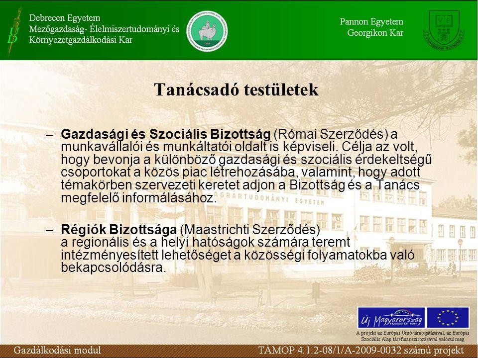 Tanácsadó testületek –Gazdasági és Szociális Bizottság (Római Szerződés) a munkavállalói és munkáltatói oldalt is képviseli.