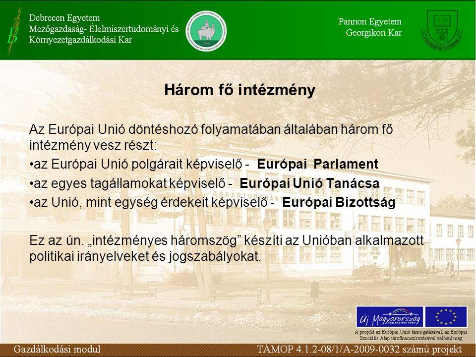 Az Európai Unió döntéshozó folyamatában általában három fő intézmény vesz részt: az Európai Unió polgárait képviselő - Európai Parlament az egyes tagállamokat képviselő - Európai Unió Tanácsa az Unió, mint egység érdekeit képviselő - Európai Bizottság Ez az ún.