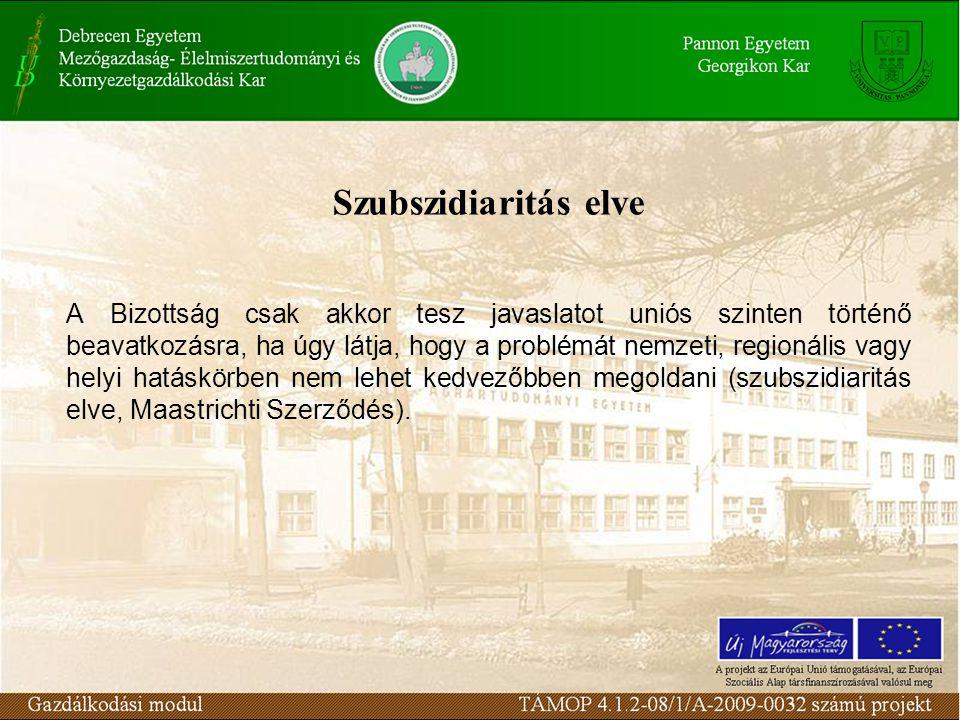 Szubszidiaritás elve A Bizottság csak akkor tesz javaslatot uniós szinten történő beavatkozásra, ha úgy látja, hogy a problémát nemzeti, regionális vagy helyi hatáskörben nem lehet kedvezőbben megoldani (szubszidiaritás elve, Maastrichti Szerződés).