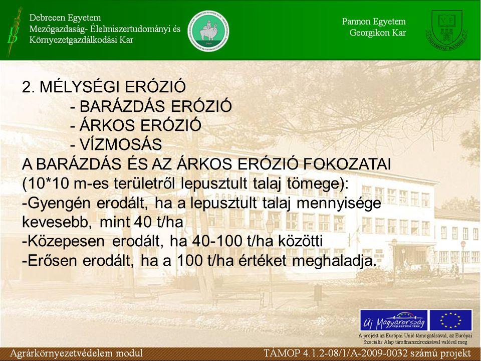 2. MÉLYSÉGI ERÓZIÓ - BARÁZDÁS ERÓZIÓ - ÁRKOS ERÓZIÓ - VÍZMOSÁS A BARÁZDÁS ÉS AZ ÁRKOS ERÓZIÓ FOKOZATAI (10*10 m-es területről lepusztult talaj tömege)