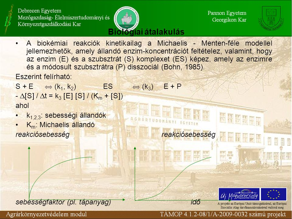 A biokémiai reakciók kinetikailag a Michaelis - Menten-féle modellel jellemezhetők, amely állandó enzim-koncentrációt feltételez, valamint, hogy az enzim (E) és a szubsztrát (S) komplexet (ES) képez, amely az enzimre és a módosult szubsztrátra (P) disszociál (Bohn, 1985).