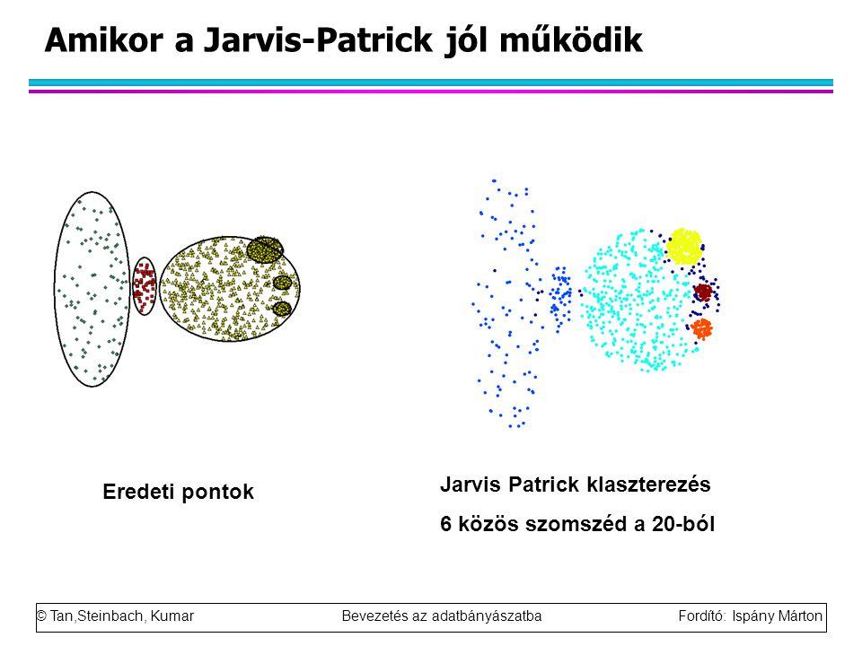 © Tan,Steinbach, Kumar Bevezetés az adatbányászatba Fordító: Ispány Márton Amikor a Jarvis-Patrick jól működik Eredeti pontok Jarvis Patrick klasztere