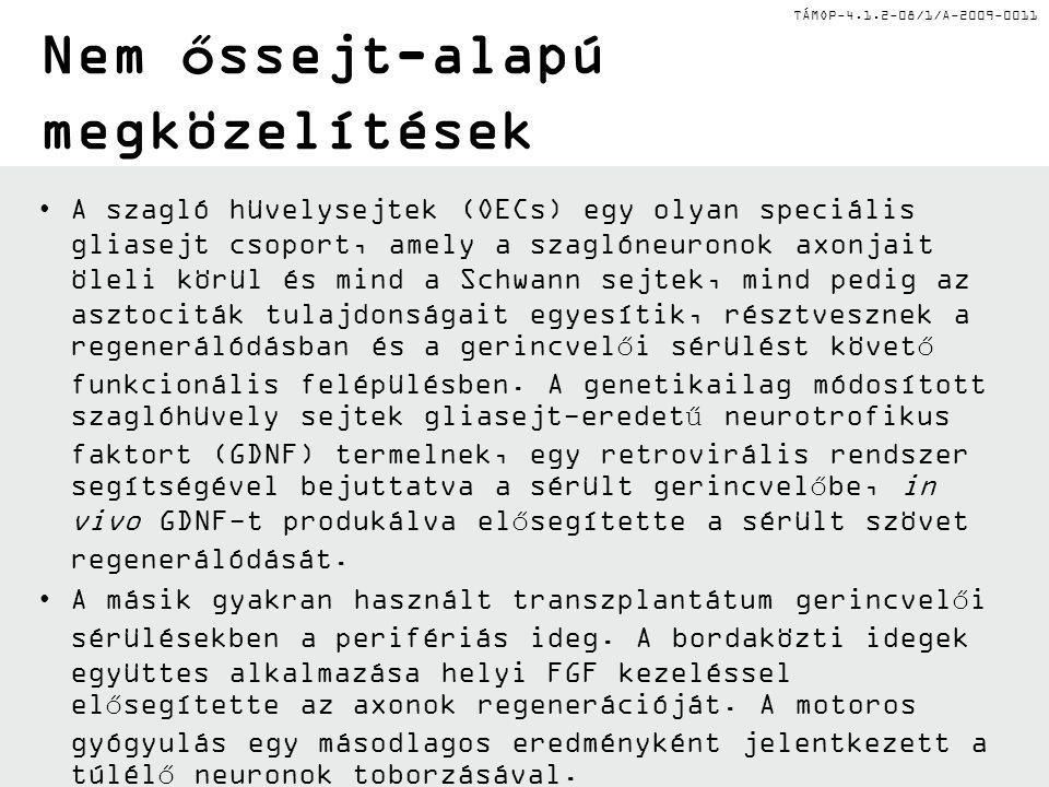 TÁMOP-4.1.2-08/1/A-2009-0011 Nem őssejt-alapú megközelítések A szagló hüvelysejtek (OECs) egy olyan speciális gliasejt csoport, amely a szaglóneuronok