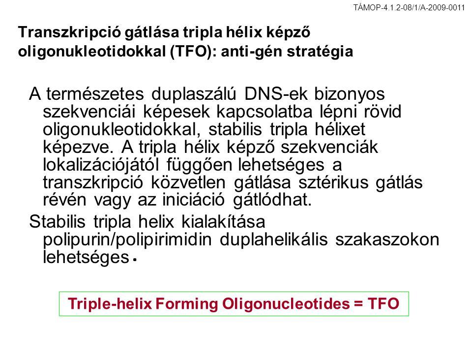 Transzkripció gátlása tripla hélix képző oligonukleotidokkal (TFO): anti-gén stratégia A természetes duplaszálú DNS-ek bizonyos szekvenciái képesek ka