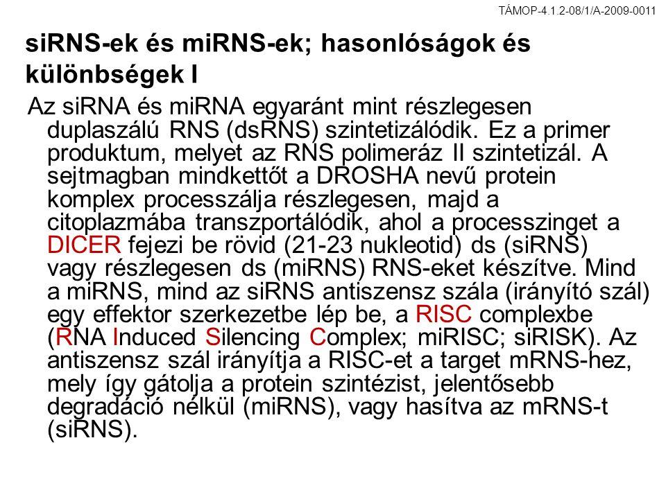 siRNS-ek és miRNS-ek; hasonlóságok és különbségek I Az siRNA és miRNA egyaránt mint részlegesen duplaszálú RNS (dsRNS) szintetizálódik. Ez a primer pr