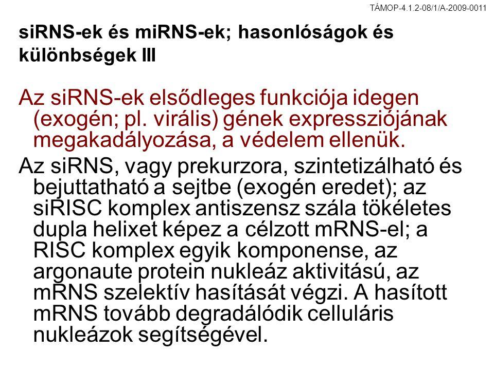 siRNS-ek és miRNS-ek; hasonlóságok és különbségek III Az siRNS-ek elsődleges funkciója idegen (exogén; pl. virális) gének expressziójának megakadályoz
