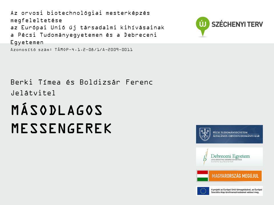 MÁSODLAGOS MESSENGEREK Az orvosi biotechnológiai mesterképzés megfeleltetése az Európai Unió új társadalmi kihívásainak a Pécsi Tudományegyetemen és a Debreceni Egyetemen Azonosító szám: TÁMOP-4.1.2-08/1/A-2009-0011 Berki Tímea és Boldizsár Ferenc Jelátvitel