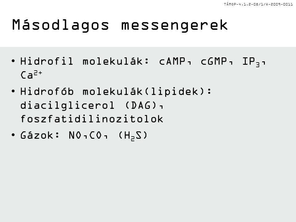 TÁMOP-4.1.2-08/1/A-2009-0011 Másodlagos messengerek Hidrofil molekulák: cAMP, cGMP, IP 3, Ca 2+ Hidrofób molekulák(lipidek): diacilglicerol (DAG), foszfatidilinozitolok Gázok: NO,CO, (H 2 S)
