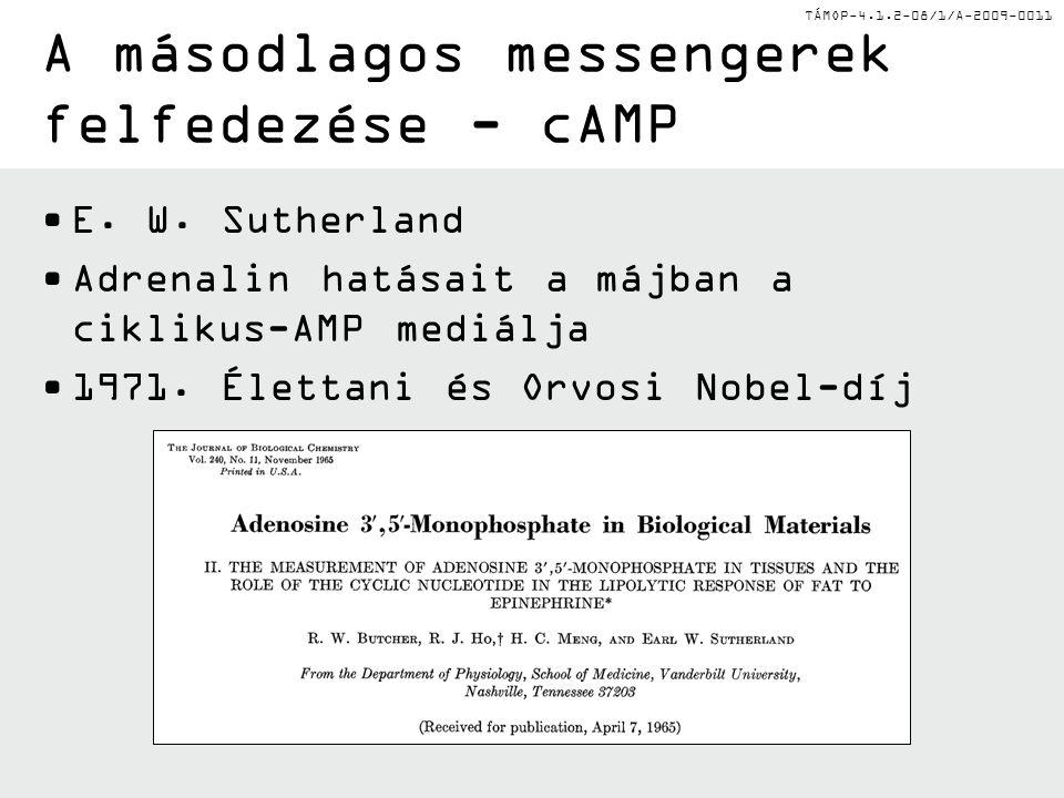 TÁMOP-4.1.2-08/1/A-2009-0011 A másodlagos messengerek felfedezése - cAMP E.