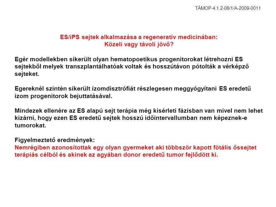 ES/iPS sejtek alkalmazása a regeneratív medicinában: Közeli vagy távoli jövő? Egér modellekben sikerült olyan hematopoetikus progenitorokat létrehozni