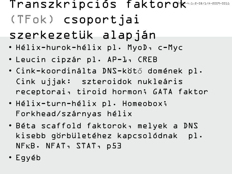 TÁMOP-4.1.2-08/1/A-2009-0011 Transzkripciós faktorok (TFok) csoportjai szerkezetük alapján Hélix-hurok-hélix pl.