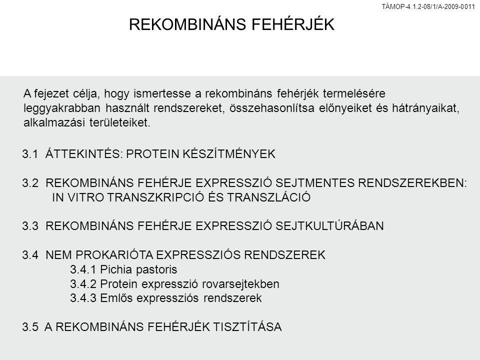 54 Emlős expressziós vektorok jellemzői Rekombináns gének expressziója emlős sejtekben több, a gén-expresszió szabályozásában alapvető elem meglétét igényli: promoter (általános vagy szövetspecifikus) enhanszer poliadenilációs szignál intron jelenléte fokozhatja az expresszió hatásfokát szelekciós marker (ampicillin, neomicin, DHFR stb.) Promoter leggyakrabban: simian vírus 40 (SV40) (erős promoterek)papovavírus Rous sarcoma vírus human citomegalovírus (CMV) TÁMOP-4.1.2-08/1/A-2009-011