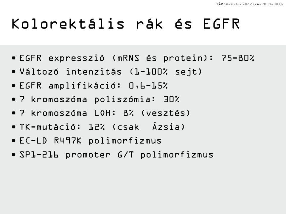 TÁMOP-4.1.2-08/1/A-2009-0011 Kolorektális rák és EGFR EGFR expresszió (mRNS és protein): 75-80% Változó intenzitás (1-100% sejt) EGFR amplifikáció: 0,6-15% 7 kromoszóma poliszómia: 30% 7 kromoszóma LOH: 8% (vesztés) TK-mutáció: 12% (csak Ázsia) EC-LD R497K polimorfizmus SP1-216 promoter G/T polimorfizmus