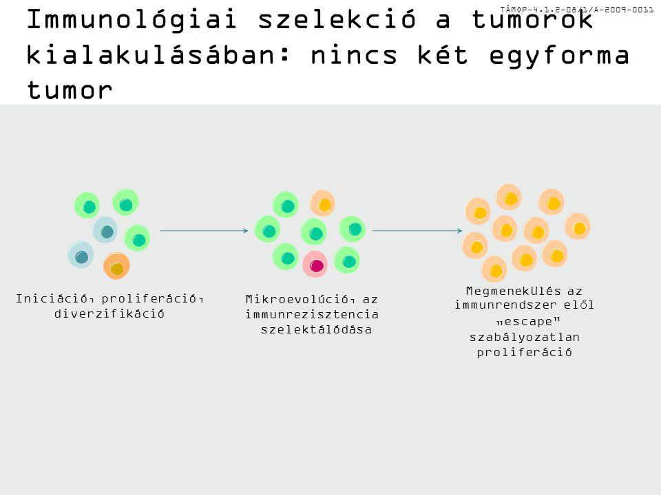 """TÁMOP-4.1.2-08/1/A-2009-0011 Immunológiai szelekció a tumorok kialakulásában: nincs két egyforma tumor Iniciáció, proliferáció, diverzifikáció Mikroevolúció, az immunrezisztencia szelektálódása Megmenekülés az immunrendszer elől """"escape szabályozatlan proliferáció"""