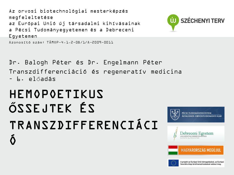 HEMOPOETIKUS ŐSSEJTEK ÉS TRANSZDIFFERENCIÁCI Ó Az orvosi biotechnológiai mesterképzés megfeleltetése az Európai Unió új társadalmi kihívásainak a Pécsi Tudományegyetemen és a Debreceni Egyetemen Azonosító szám: TÁMOP-4.1.2-08/1/A-2009-0011 Dr.