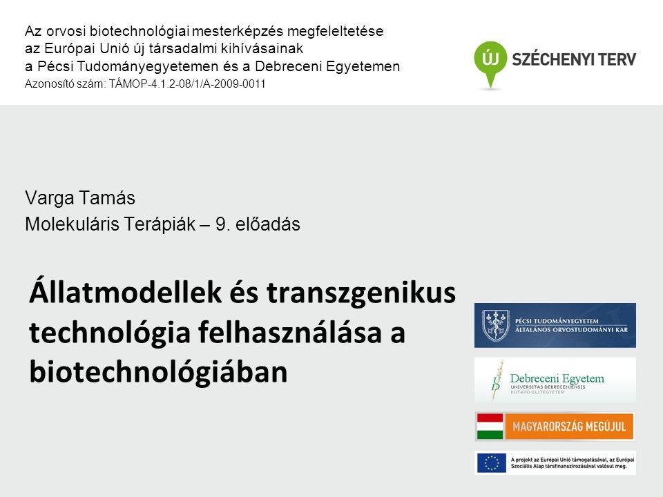 Állatmodellek és transzgenikus technológia felhasználása a biotechnológiában Az orvosi biotechnológiai mesterképzés megfeleltetése az Európai Unió új társadalmi kihívásainak a Pécsi Tudományegyetemen és a Debreceni Egyetemen Azonosító szám: TÁMOP-4.1.2-08/1/A-2009-0011 Varga Tamás Molekuláris Terápiák – 9.