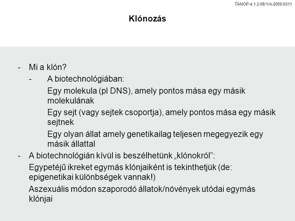 TÁMOP-4.1.2-08/1/A-2009-0011 Klónozás -Mi a klón.