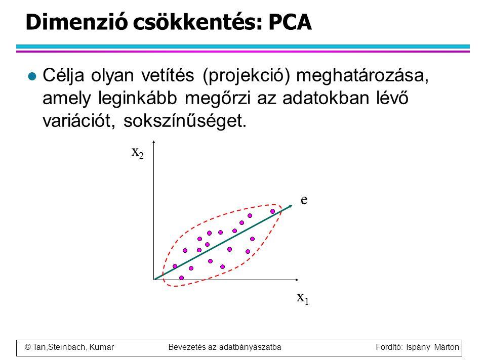 © Tan,Steinbach, Kumar Bevezetés az adatbányászatba Fordító: Ispány Márton Dimenzió csökkentés: PCA l Célja olyan vetítés (projekció) meghatározása, a