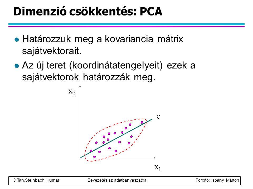 © Tan,Steinbach, Kumar Bevezetés az adatbányászatba Fordító: Ispány Márton Dimenzió csökkentés: PCA l Határozzuk meg a kovariancia mátrix sajátvektora