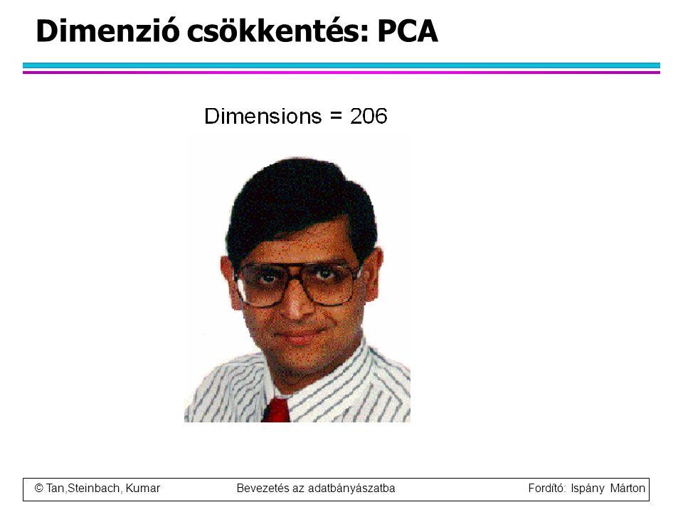 © Tan,Steinbach, Kumar Bevezetés az adatbányászatba Fordító: Ispány Márton Dimenzió csökkentés: PCA
