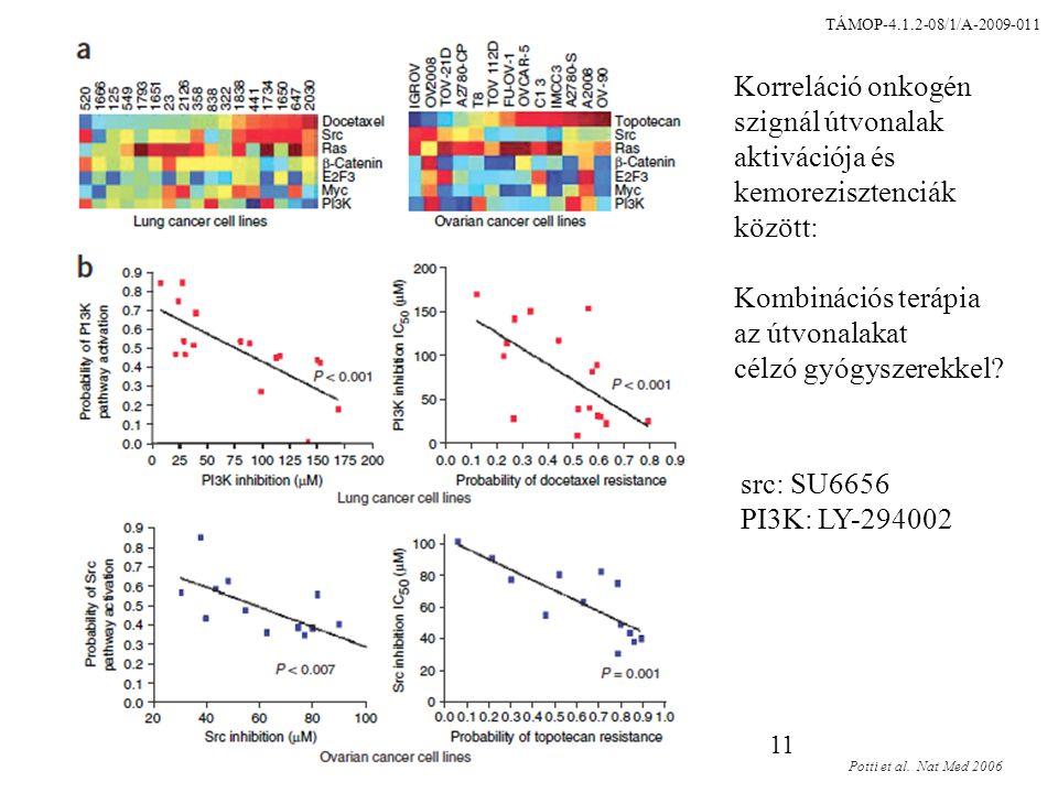 11 Korreláció onkogén szignál útvonalak aktivációja és kemorezisztenciák között: Kombinációs terápia az útvonalakat célzó gyógyszerekkel.