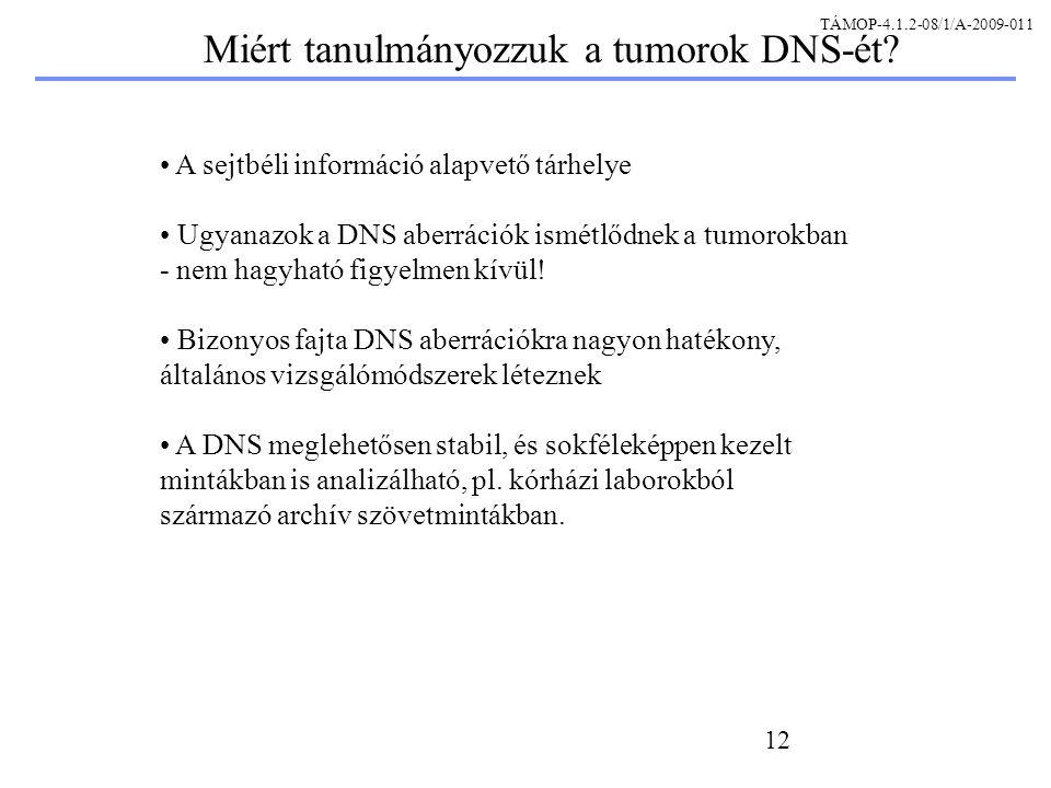 12 A sejtbéli információ alapvető tárhelye Ugyanazok a DNS aberrációk ismétlődnek a tumorokban - nem hagyható figyelmen kívül.
