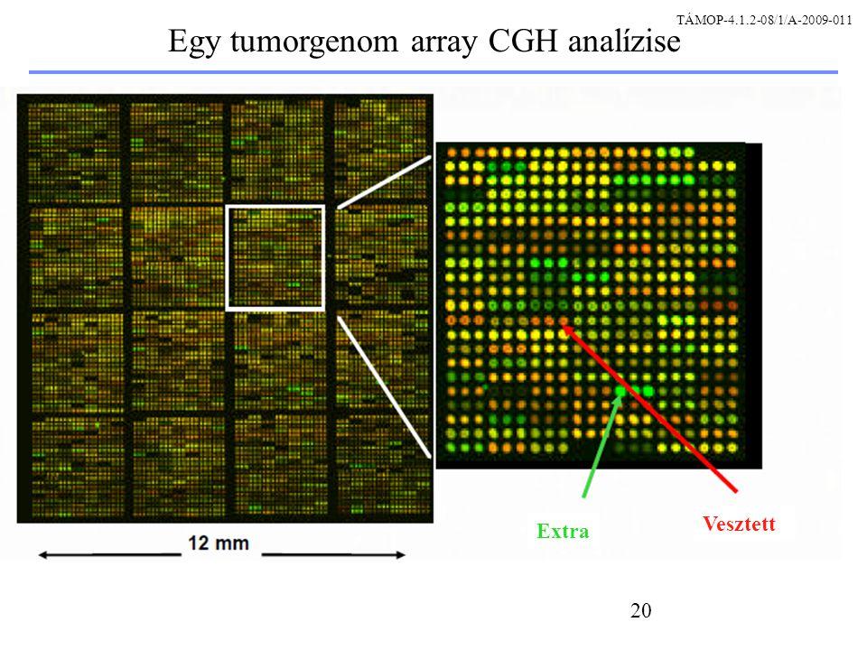 20 Egy tumorgenom array CGH analízise Extra Vesztett TÁMOP-4.1.2-08/1/A-2009-011