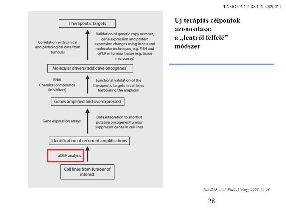 28 Tan DSP et al. Pathobiology 2008.