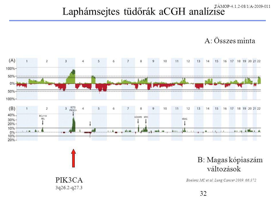 32 Laphámsejtes tüdőrák aCGH analízise Boelens MC et al.
