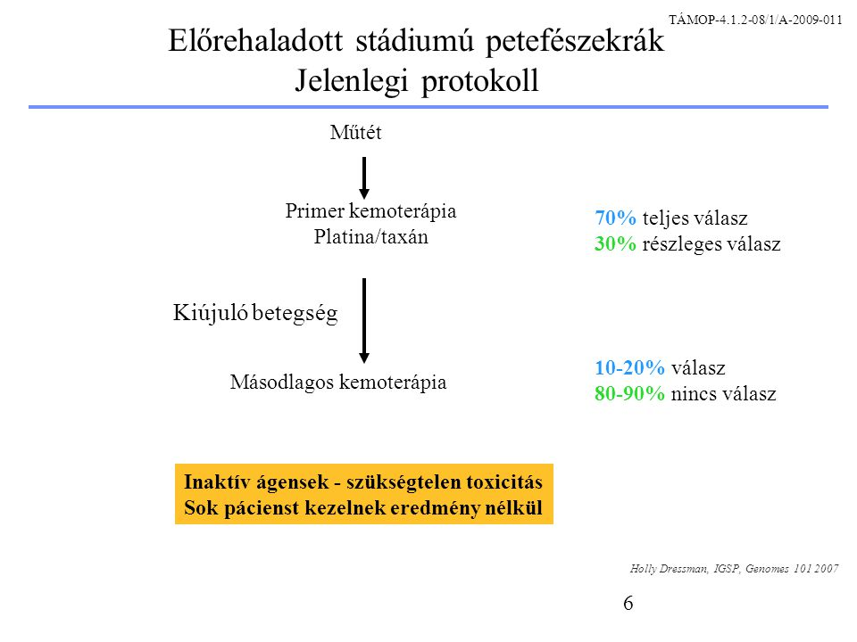 6 Előrehaladott stádiumú petefészekrák Jelenlegi protokoll Holly Dressman, IGSP, Genomes 101 2007 Műtét 70% teljes válasz 30% részleges válasz Primer kemoterápia Platina/taxán Kiújuló betegség Másodlagos kemoterápia 10-20% válasz 80-90% nincs válasz Inaktív ágensek - szükségtelen toxicitás Sok pácienst kezelnek eredmény nélkül TÁMOP-4.1.2-08/1/A-2009-011