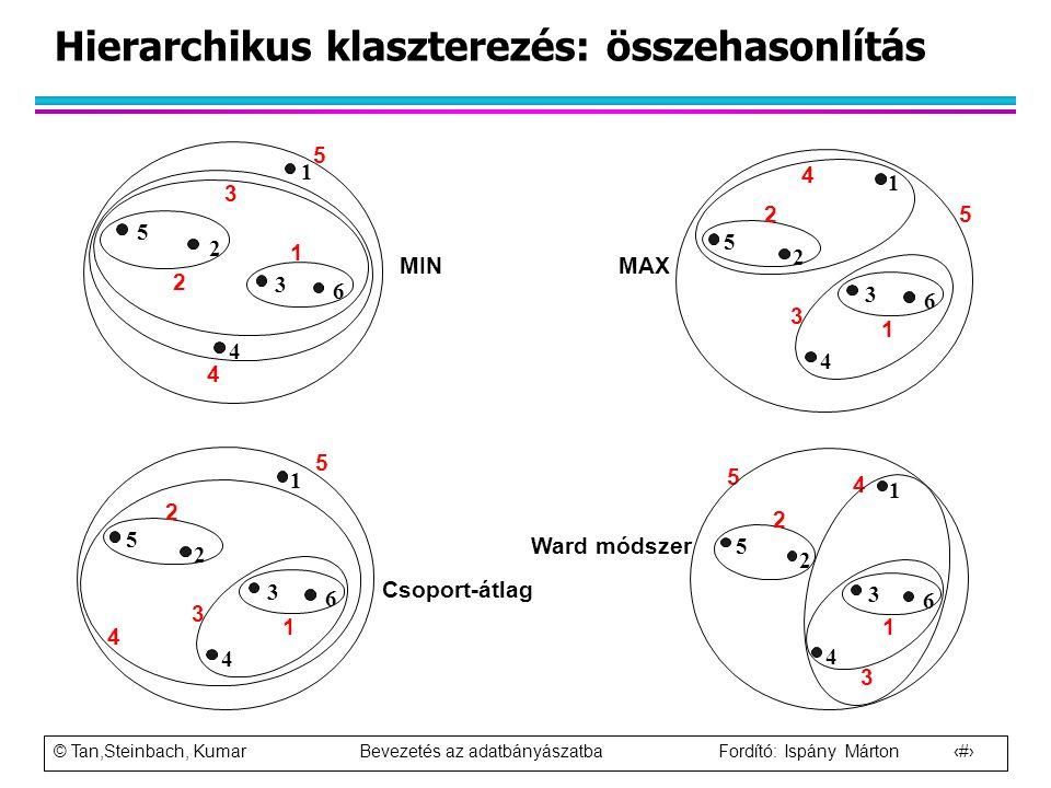 © Tan,Steinbach, Kumar Bevezetés az adatbányászatba Fordító: Ispány Márton 72 Hierarchikus klaszterezés: összehasonlítás Csoport-átlag Ward módszer 1