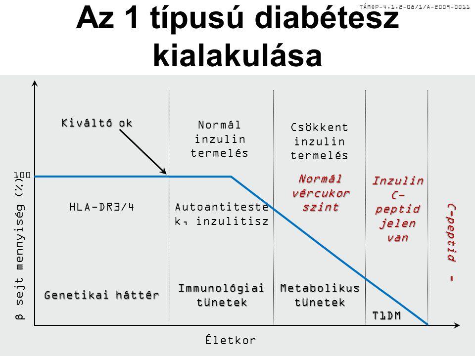 TÁMOP-4.1.2-08/1/A-2009-0011 Az 1 típusú diabétesz kialakulása Genetikai háttér Immunológiai tünetek T1DM Metabolikus tünetek Kiváltó ok Autoantiteste k, inzulitisz Normál inzulin termelés Csökkent inzulin termelés Normál vércukor szint Inzulin C- peptid jelen van C-peptid - C-peptid - Életkor β sejt mennyiség (%) 100 HLA-DR3/4