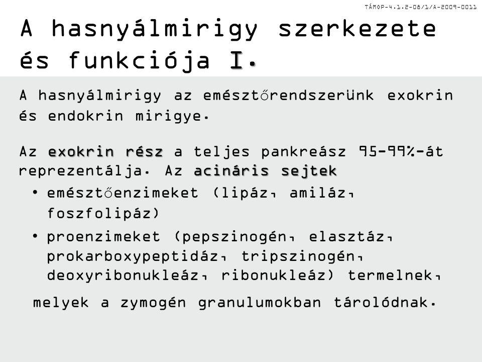 TÁMOP-4.1.2-08/1/A-2009-0011 I. A hasnyálmirigy szerkezete és funkciója I.